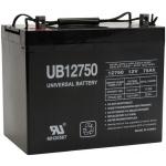 UPG Sealed Lead Acid AGM: UB12750, 75 AH, 12V, Z1